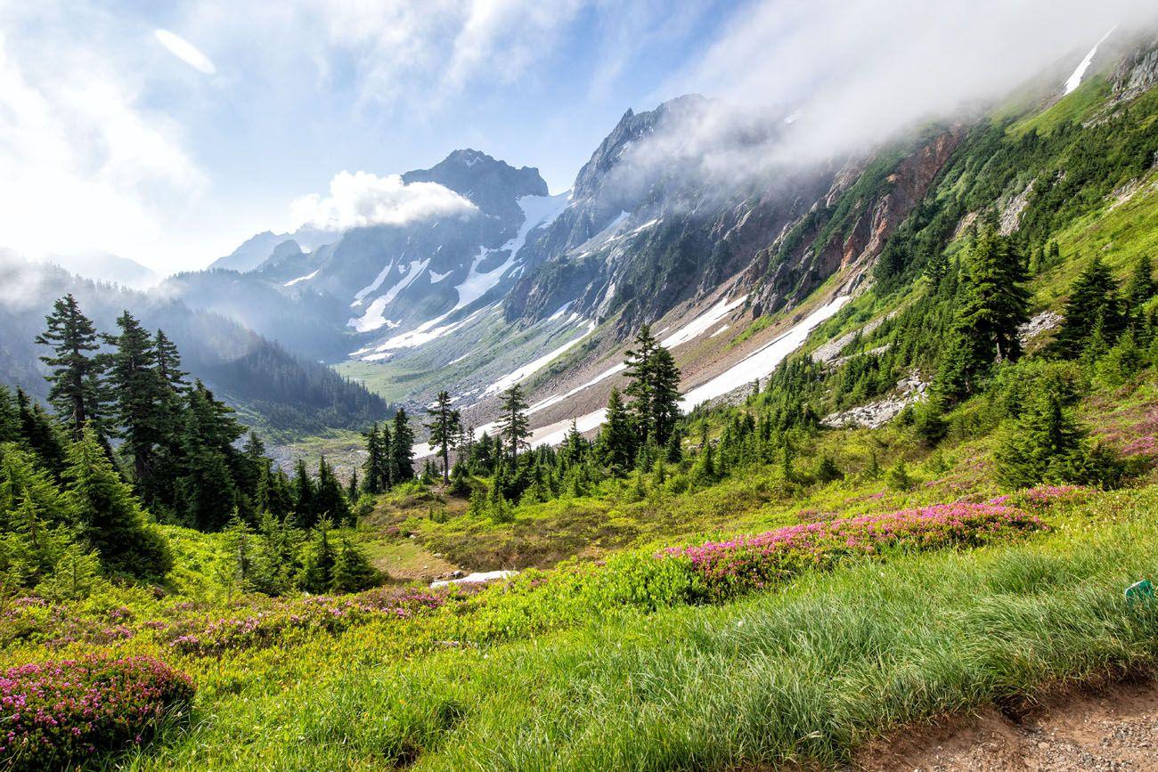 Cascade Pass View