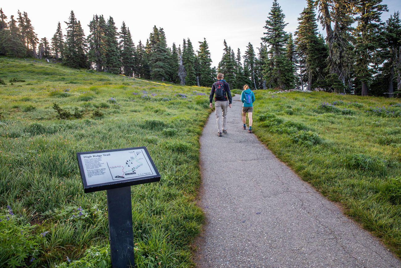 High Ridge Trail Mt. Angeles Hike
