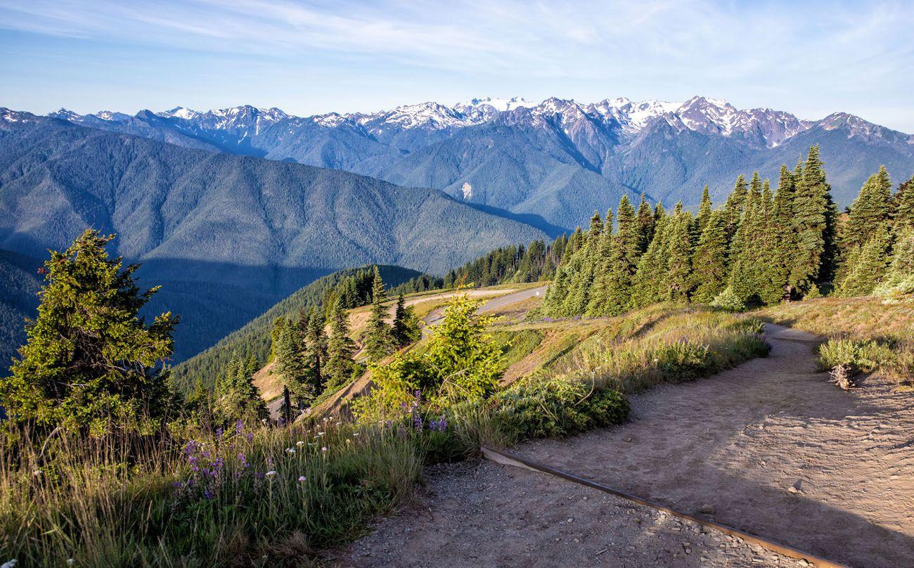 High Ridge Trail View