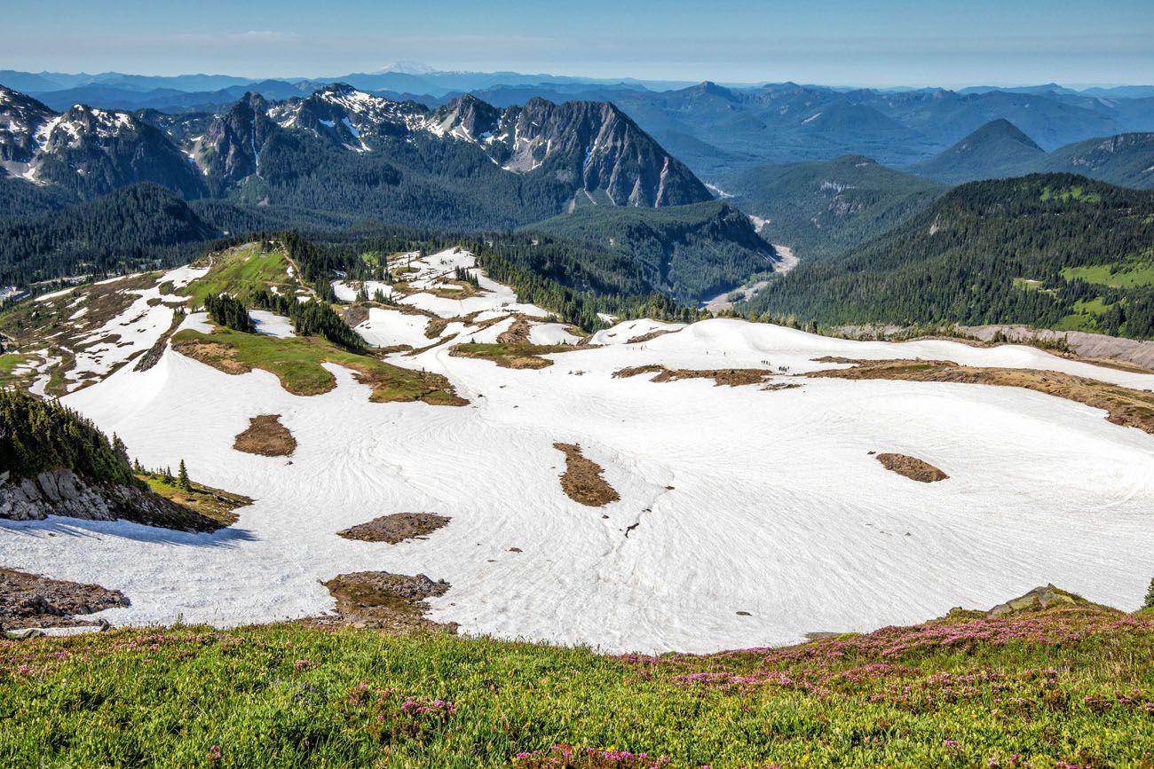 Mt Rainier Paradise
