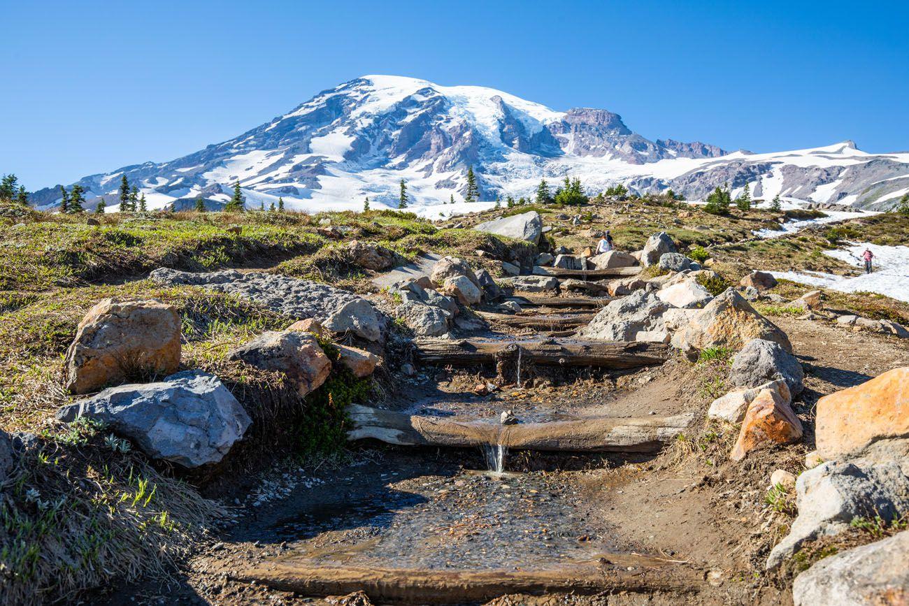 Mt Rainier in July