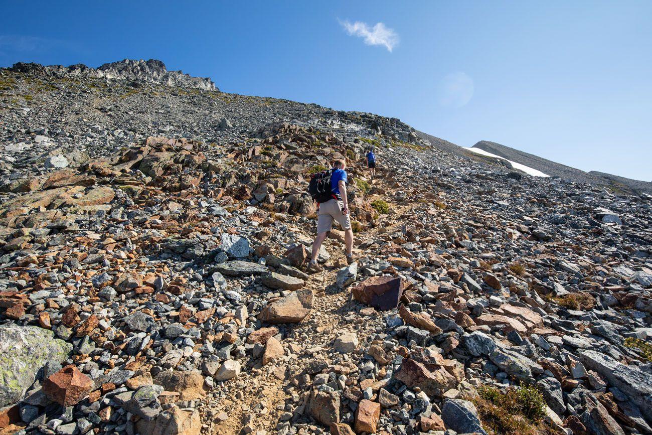Sahale Arm Trail in August