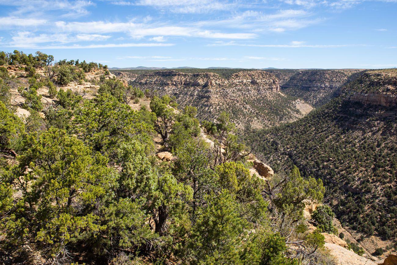 Soda Canyon Mesa Verde