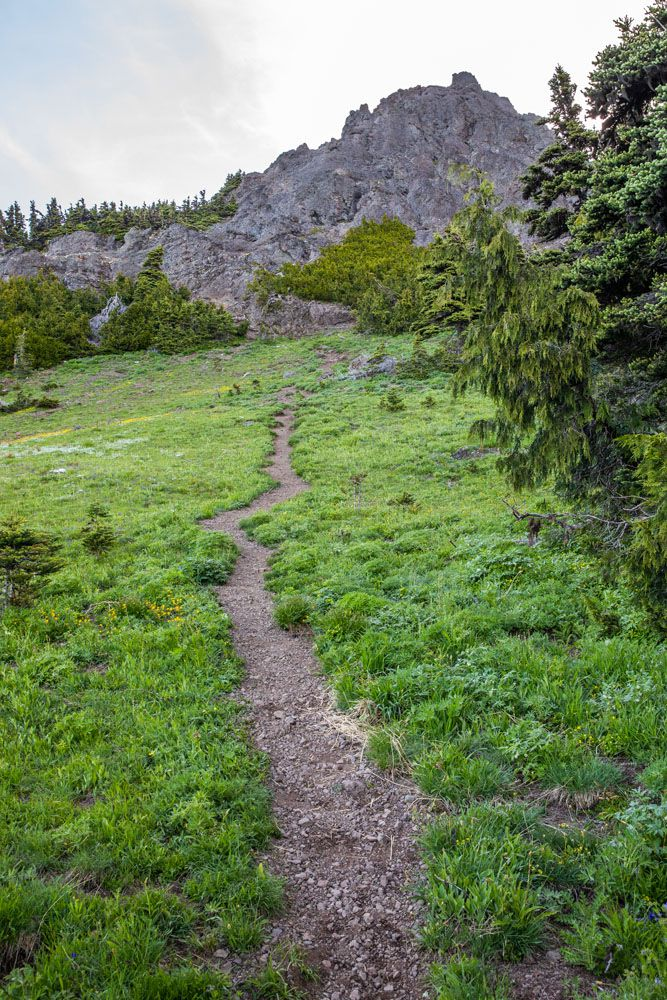 Trail to Mount Angeles