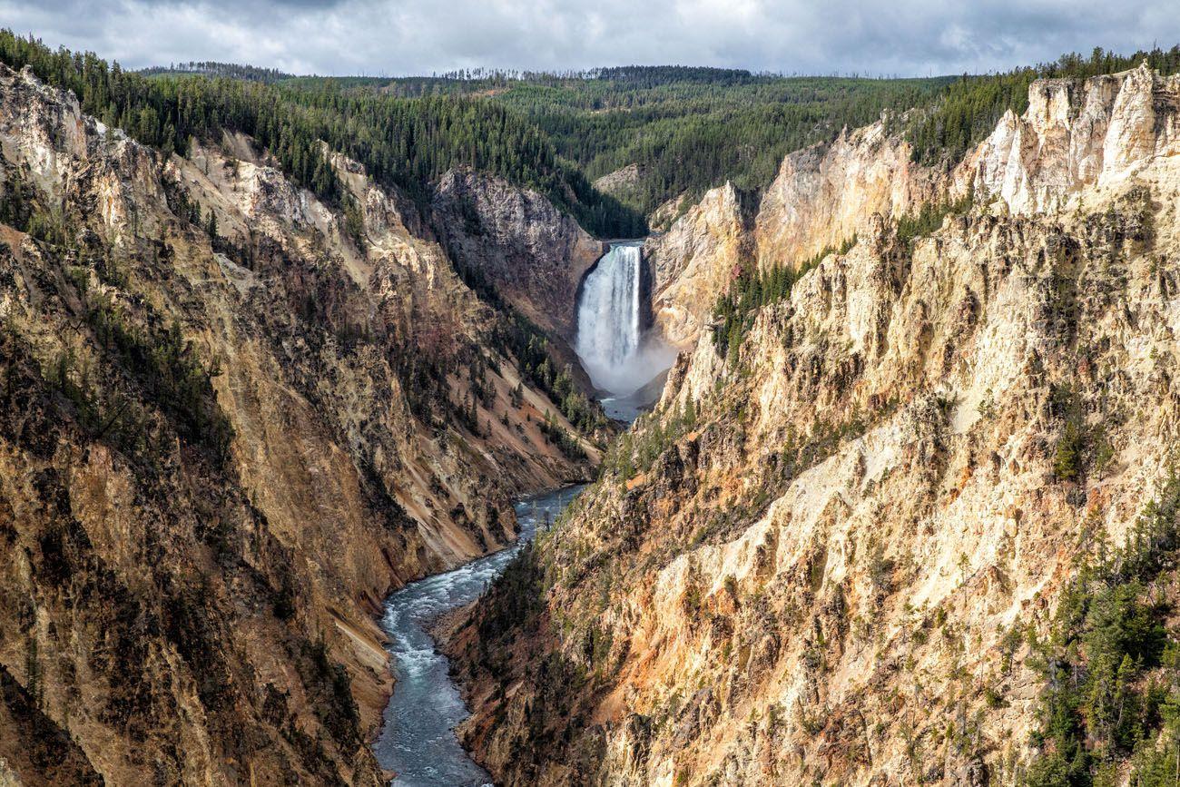 Artist Point Yellowstone Day Trip
