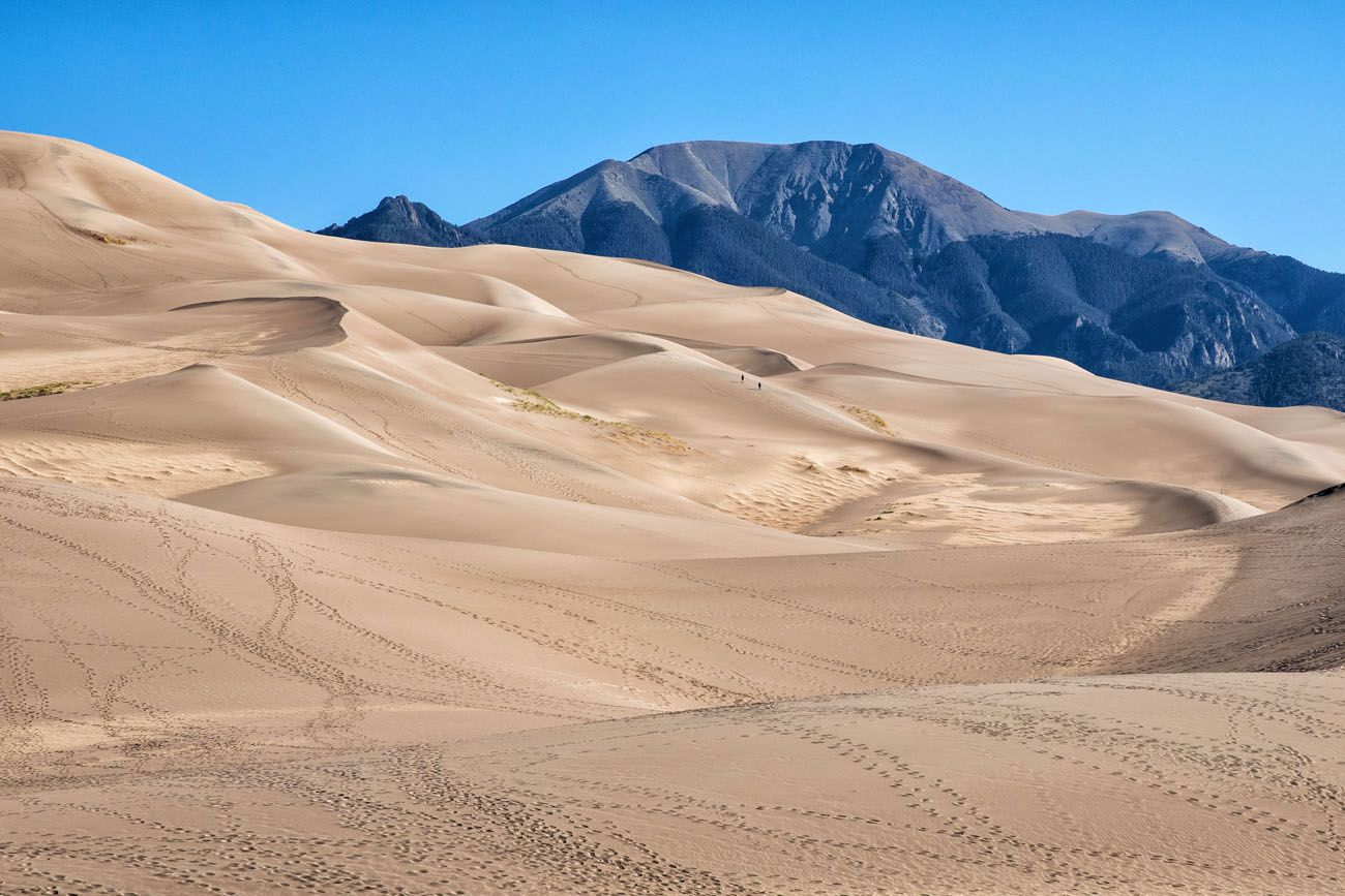 Great Sand Dunes national parks with kids