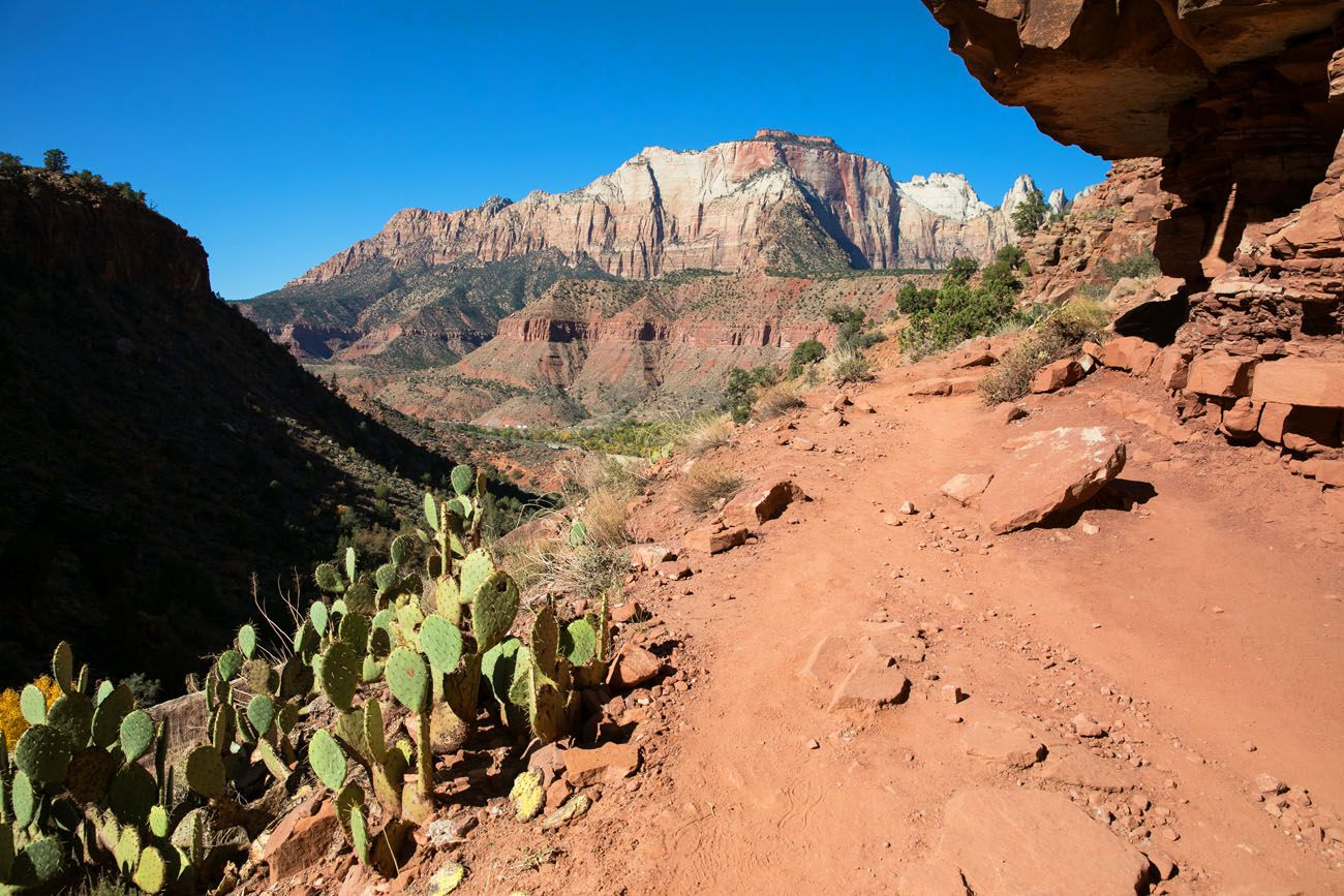 Hike the Watchman Trail