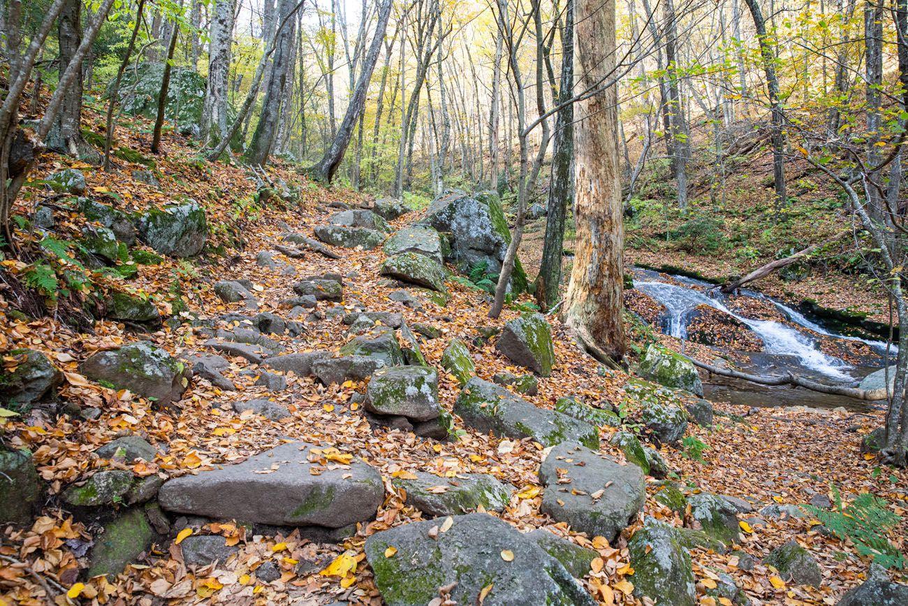 Hiking Trail SNP
