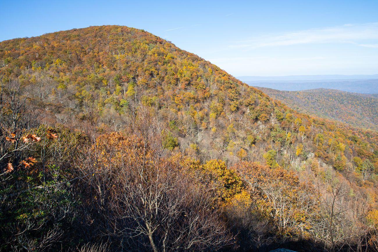 Hogsback Mountain