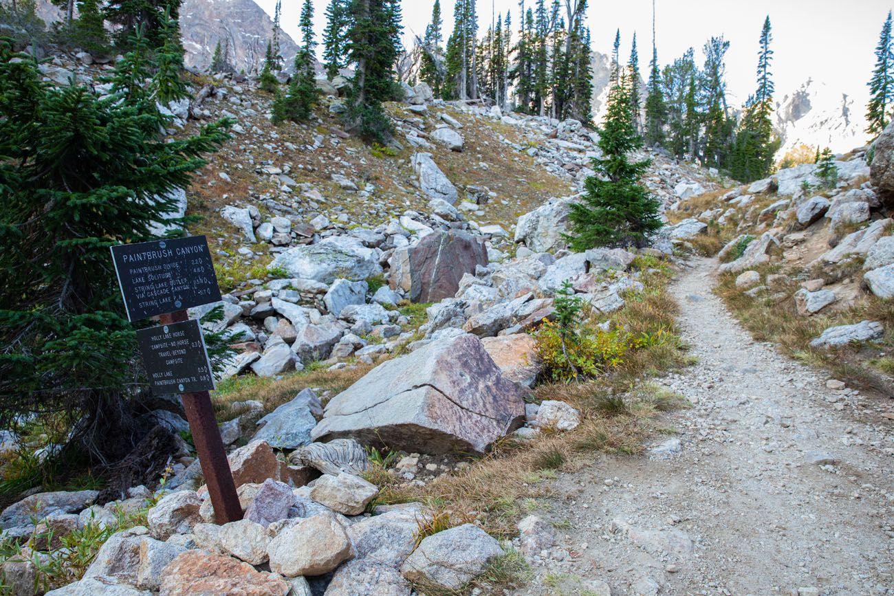 Paintbrush Canyon Trail Split