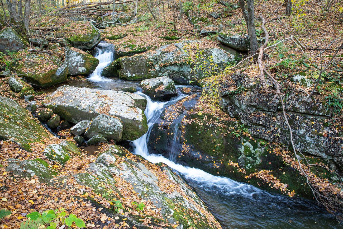 Rose River Falls Loop things to do in Shenandoah