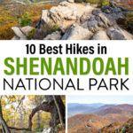 Shenandoah Hikes