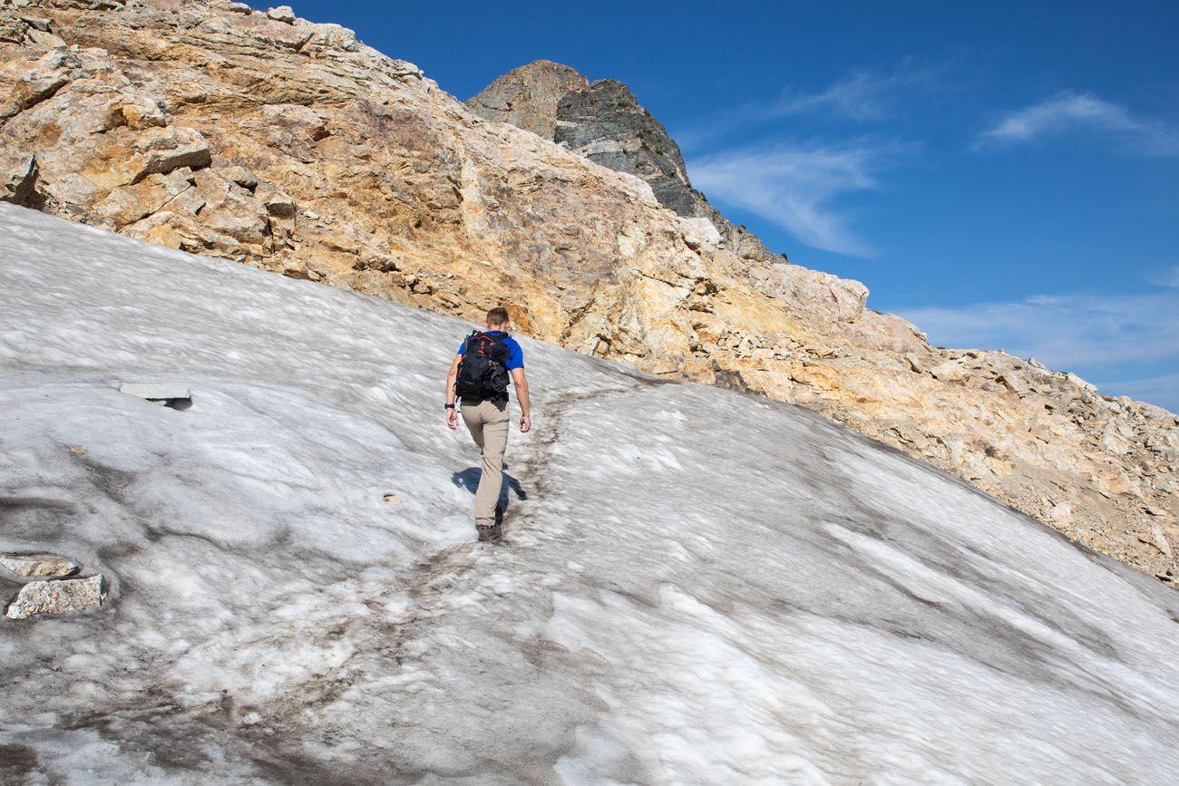 Snow Paintbrush Trail