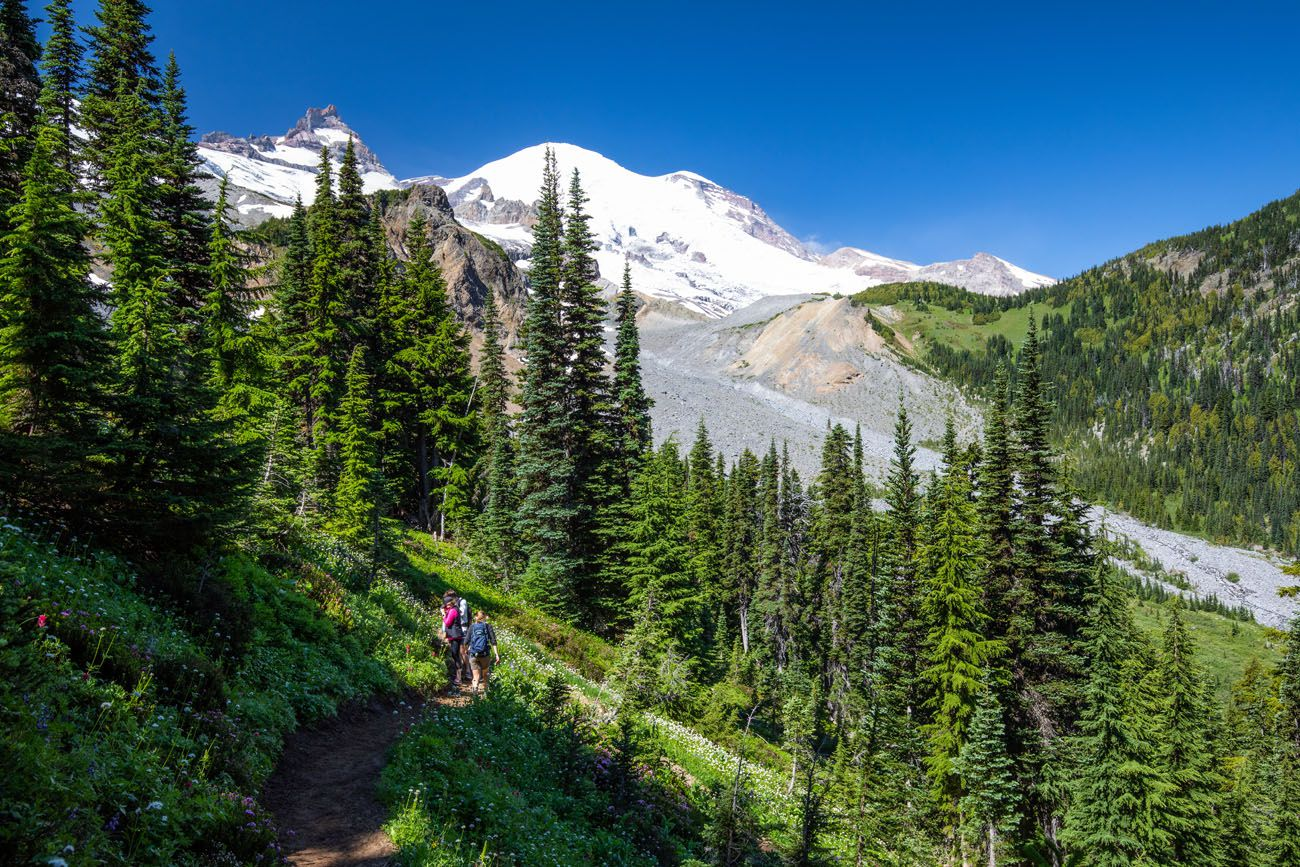 Switchbacks and Mount Rainier