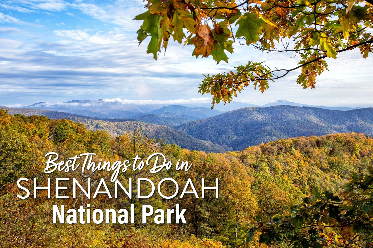 Things to do in Shenandoah