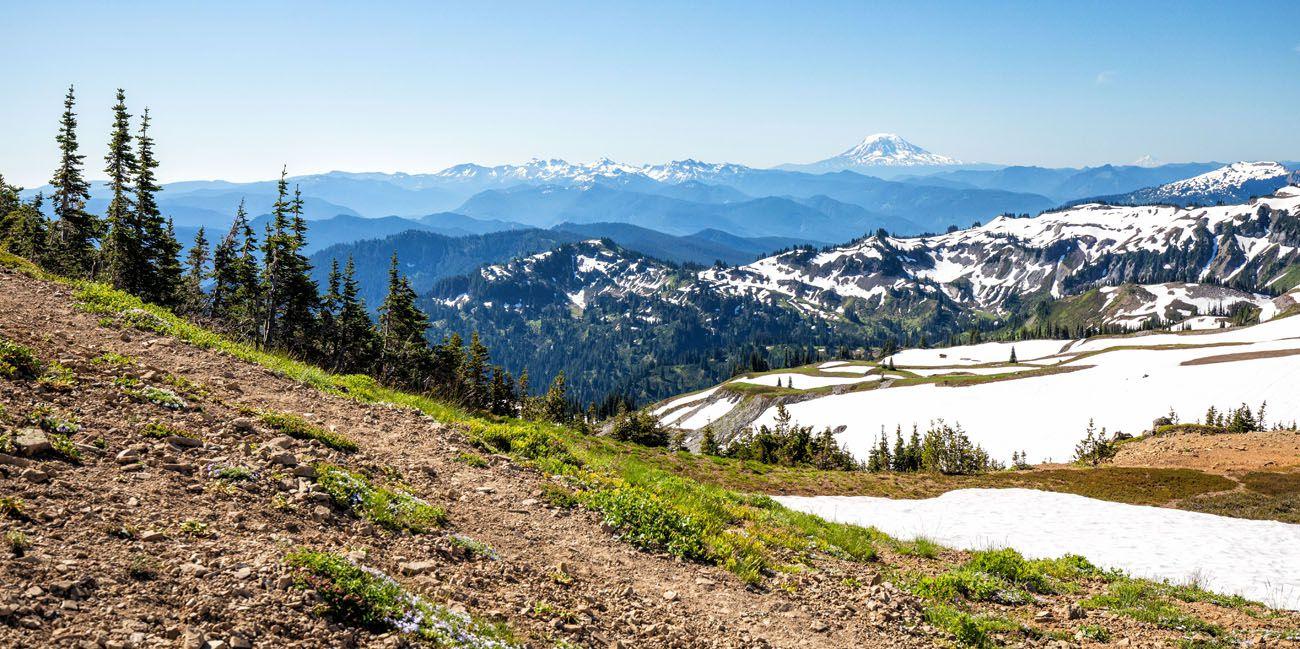 View of Mount Adams