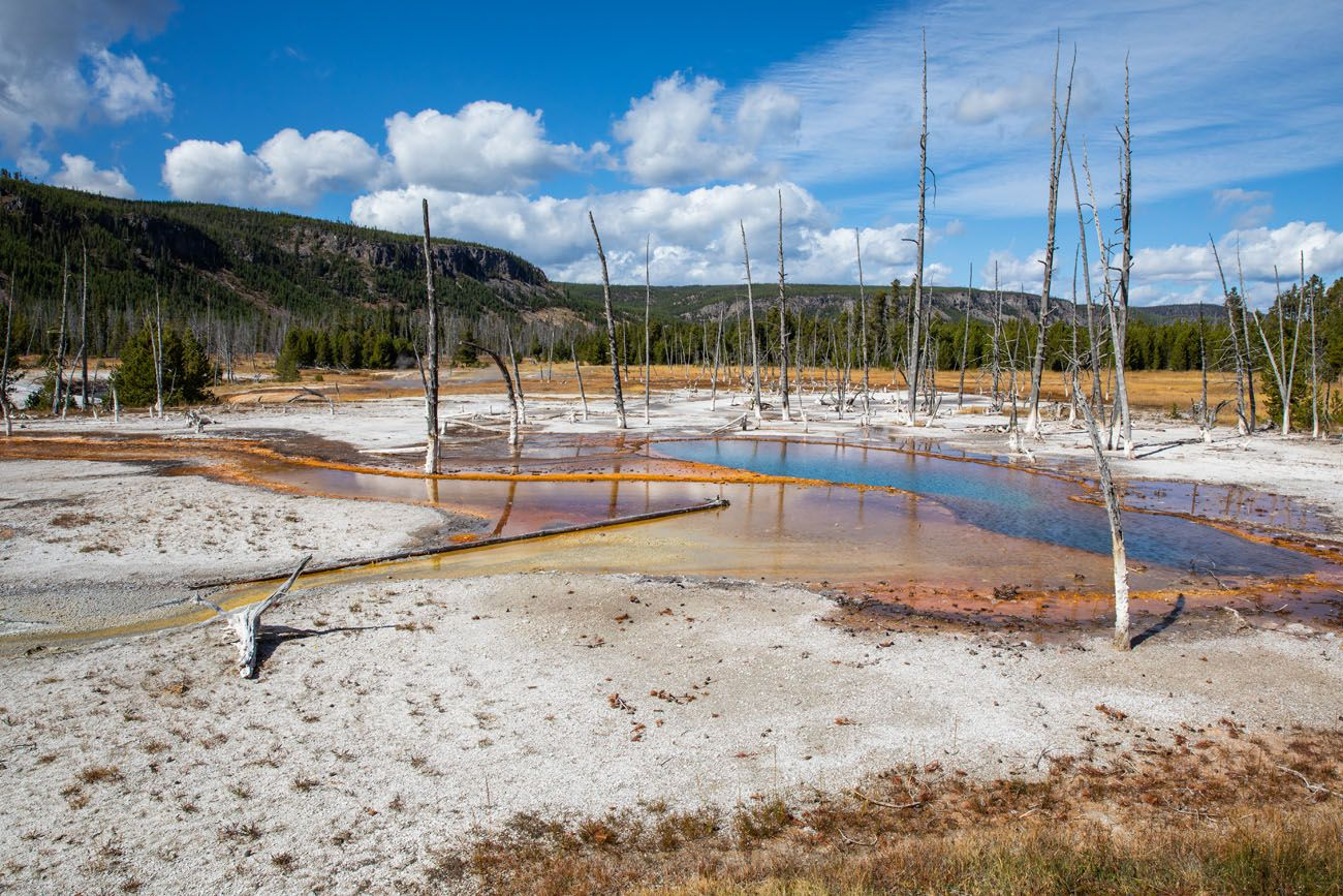 Yellowstone Geyser Basin