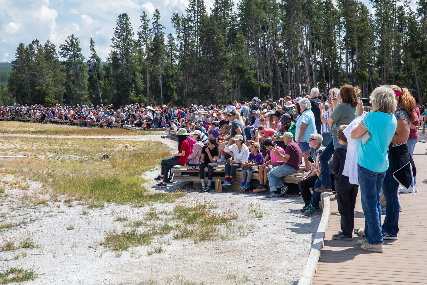 Summer Crowds at Old Faithful