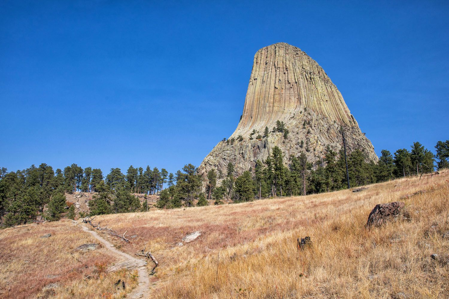Best Devils Tower Hike