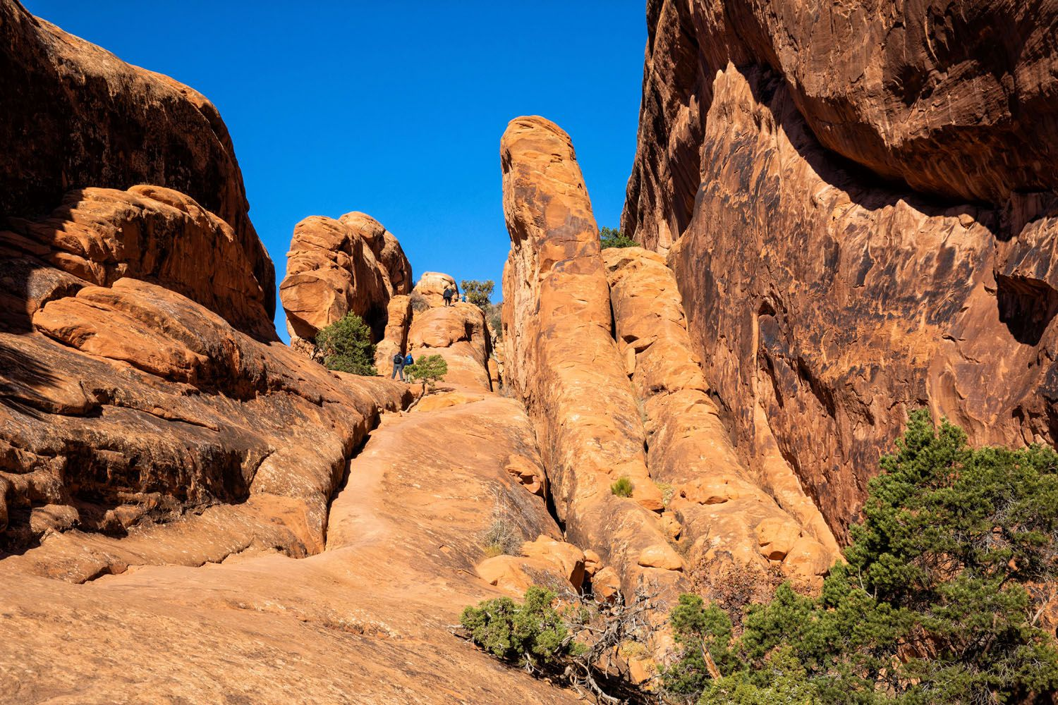 Best Hike Arches National Park