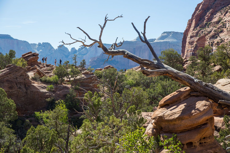 Canyon Overlook Hike