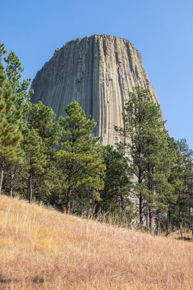 Devils Tower Guide