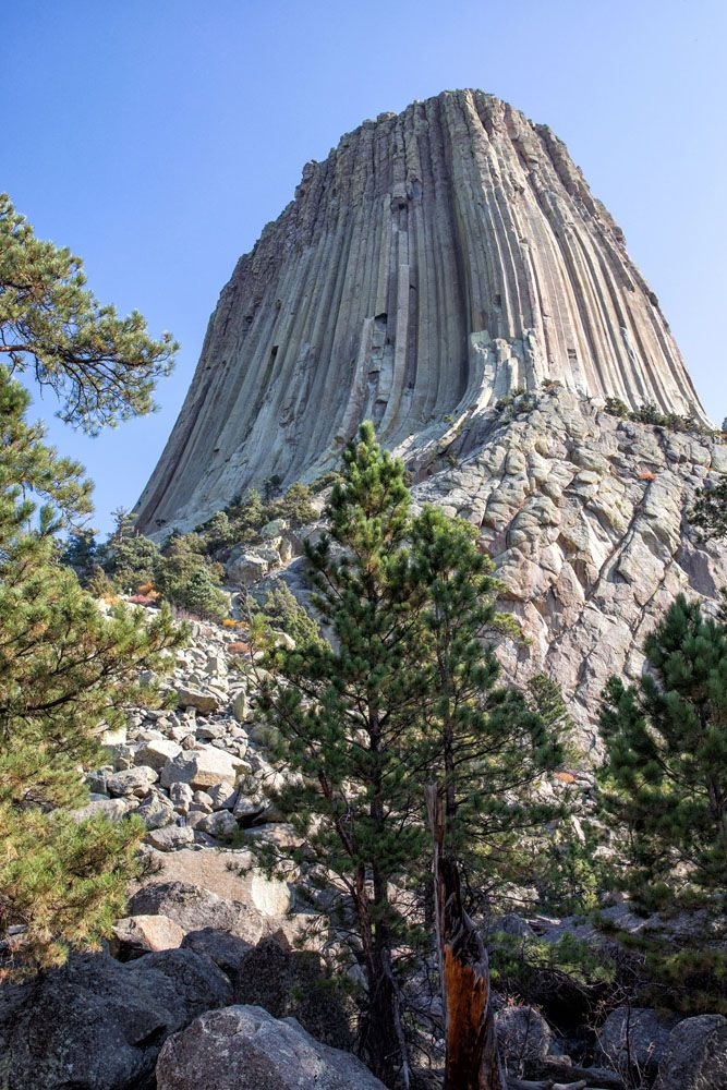 Devils Tower Tower Trail