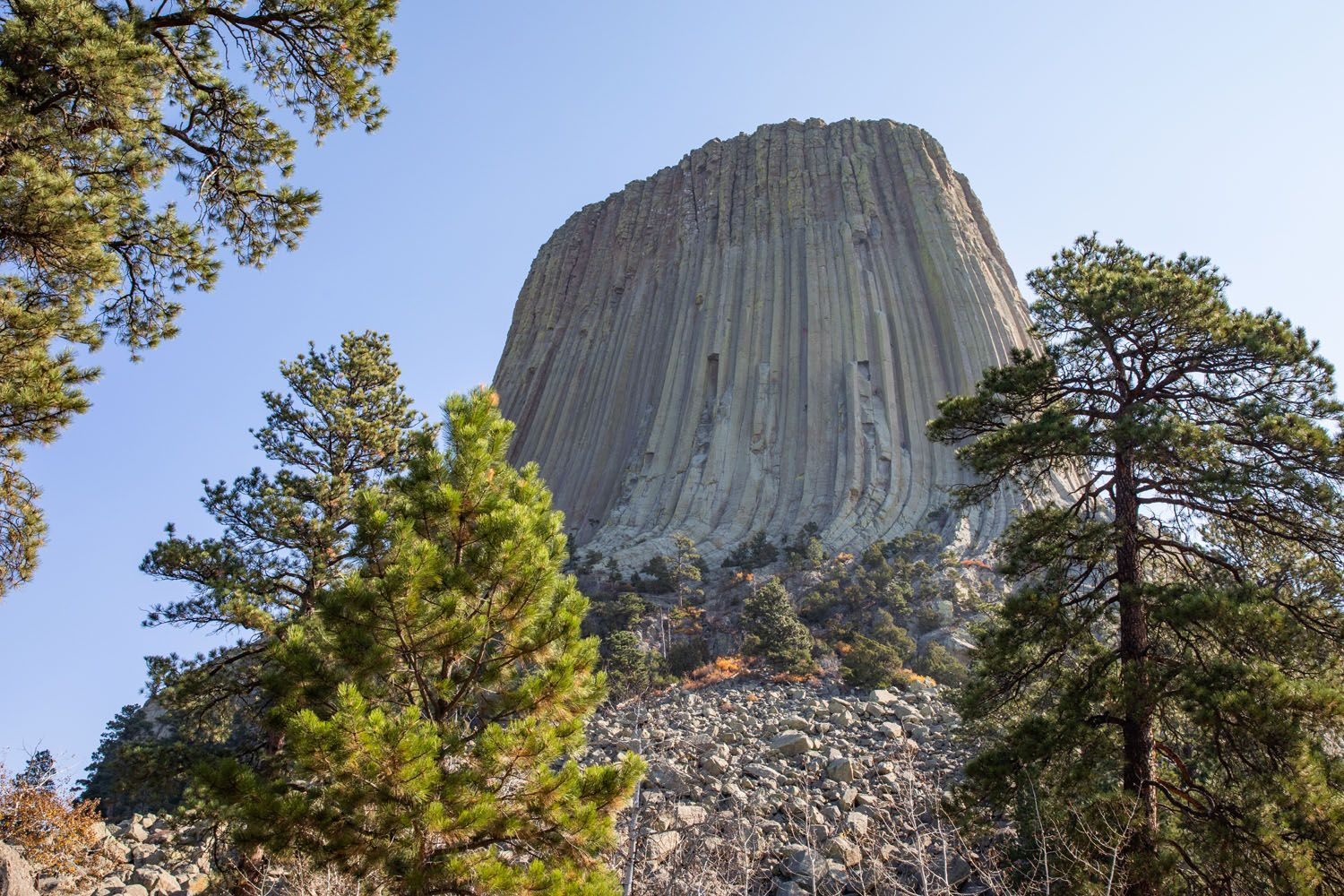 First View Devils Tower