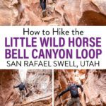 Little Wild Horse Bell Canyon Slot Canyon