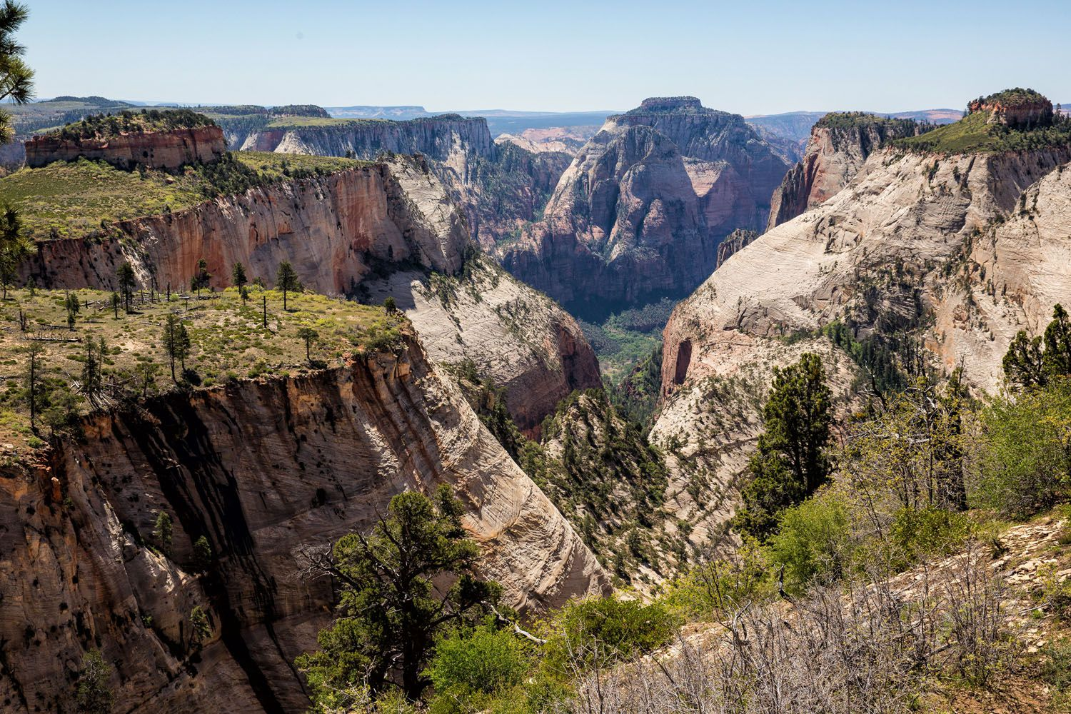 View from West Rim Trail