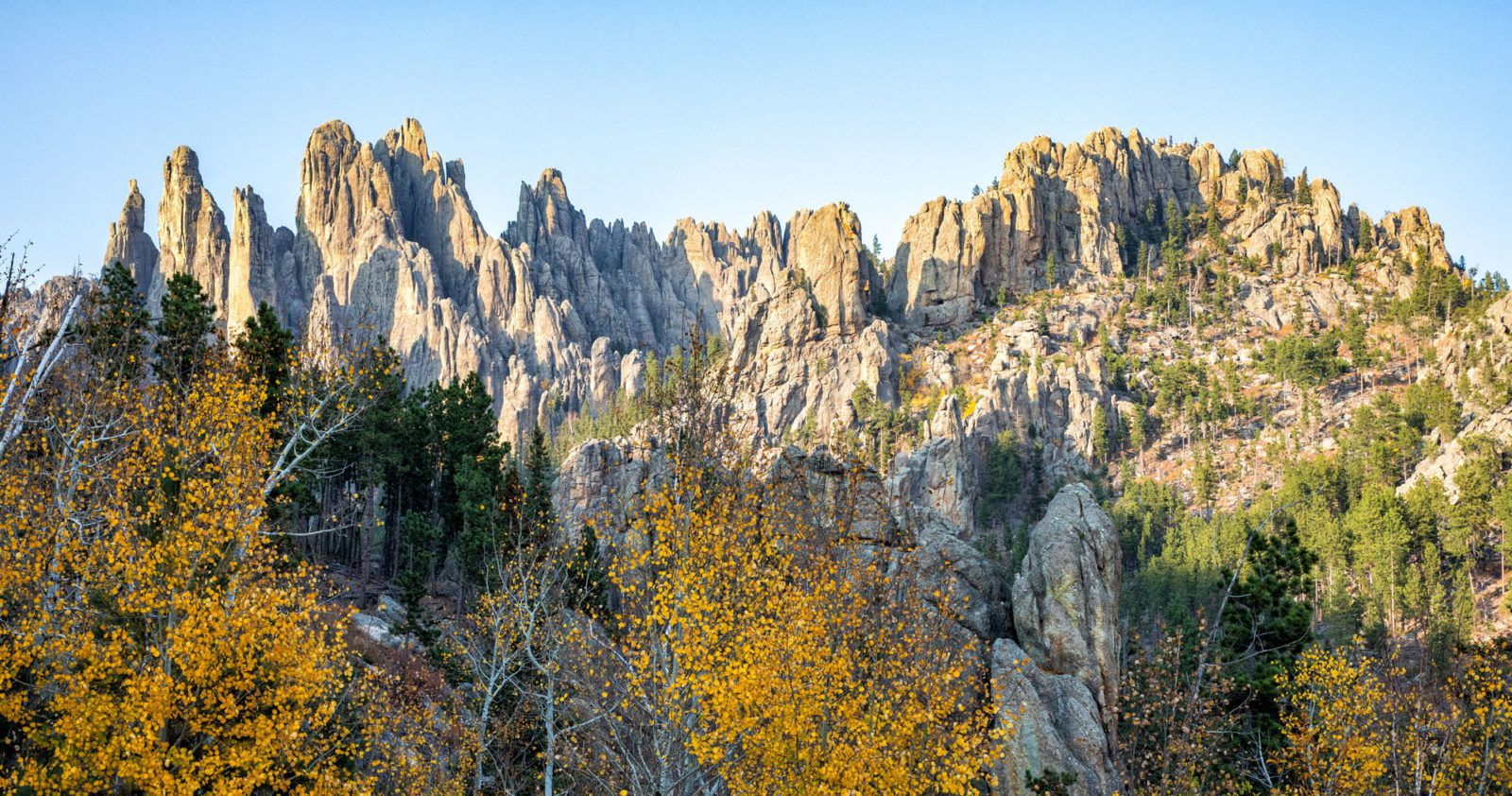 Best Things to do in Custer State Park