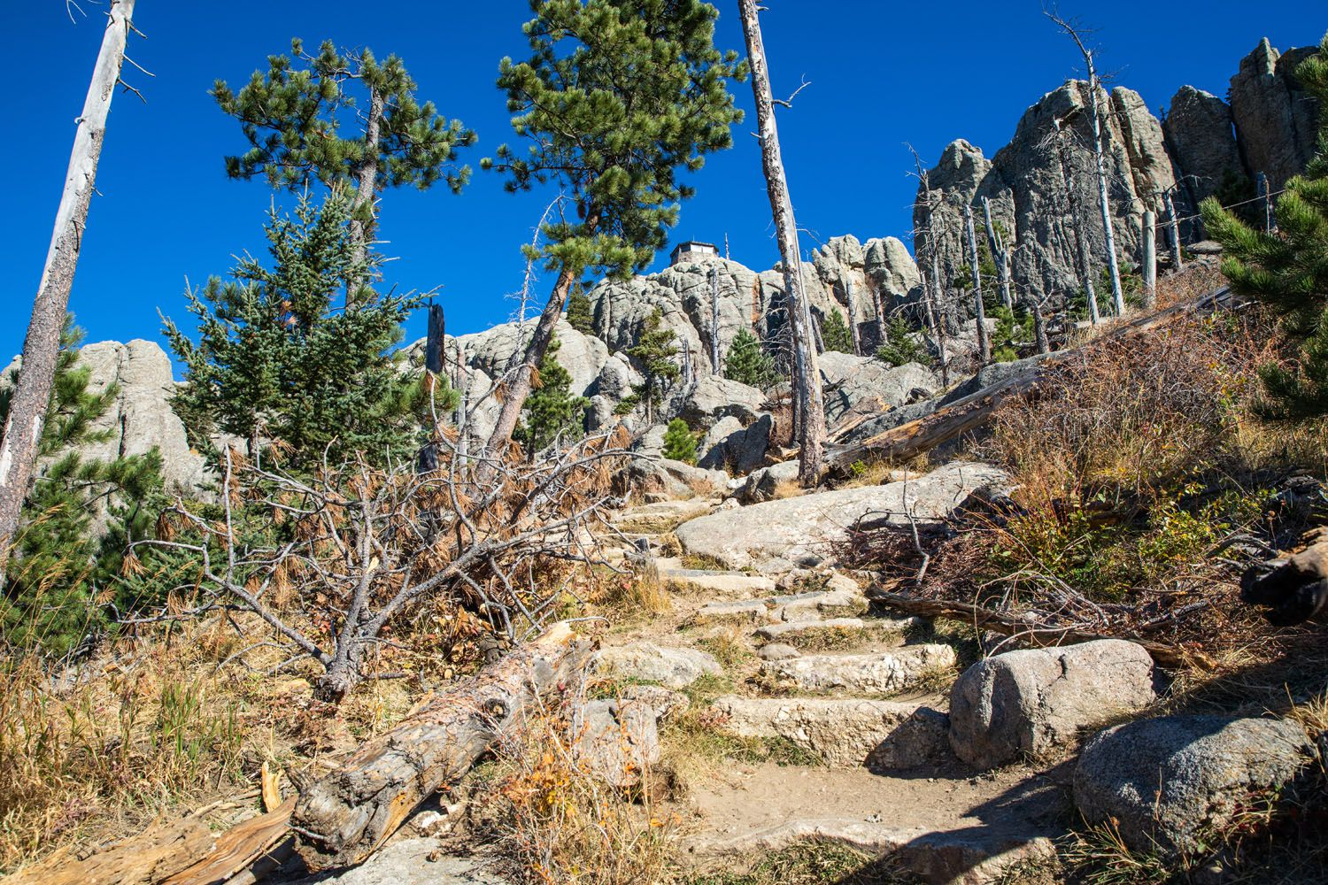 Black Elk Peak Trail