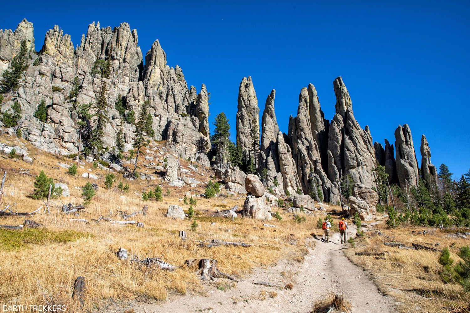 Cathedral Spires Custer State Park