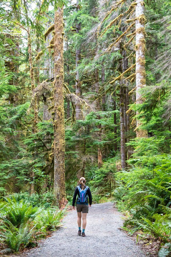 Hike Olympic National Park