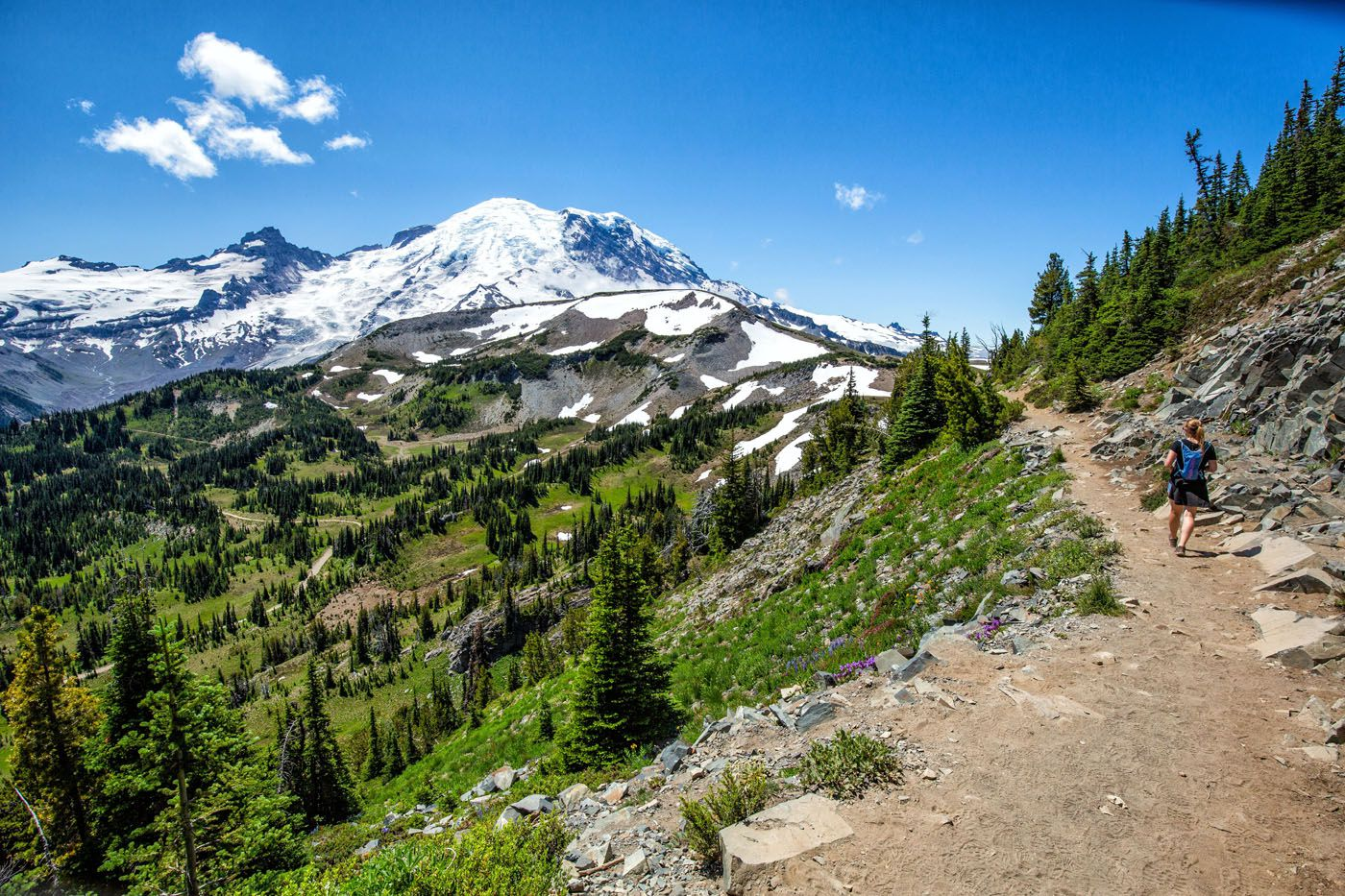 Mount Rainier Hike July