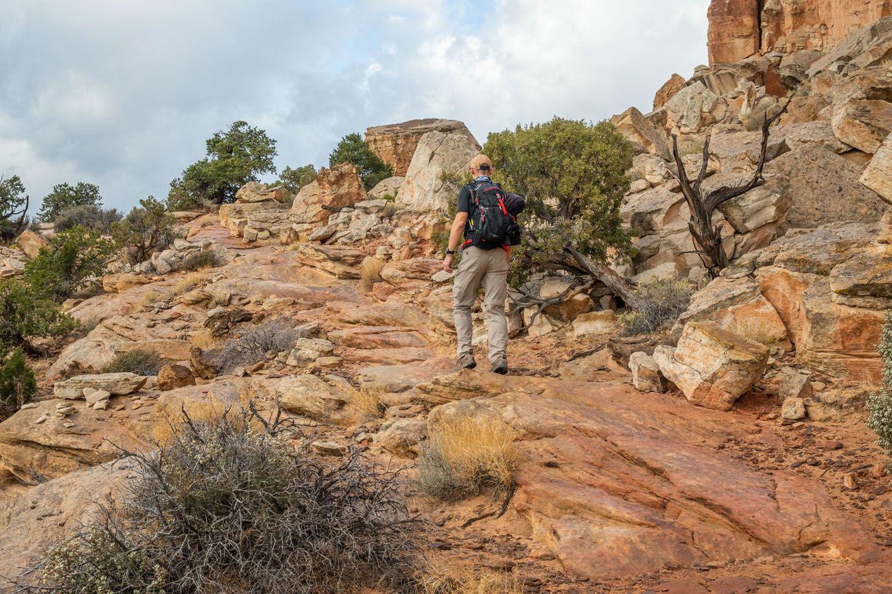 Navajo Knobs Hiking Trail