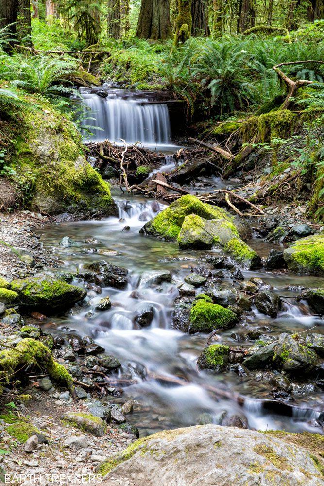 Olympic National Park photo