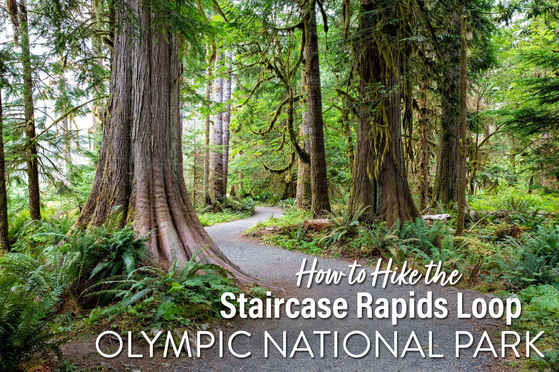 Staircase Rapids Loop Trail Hike