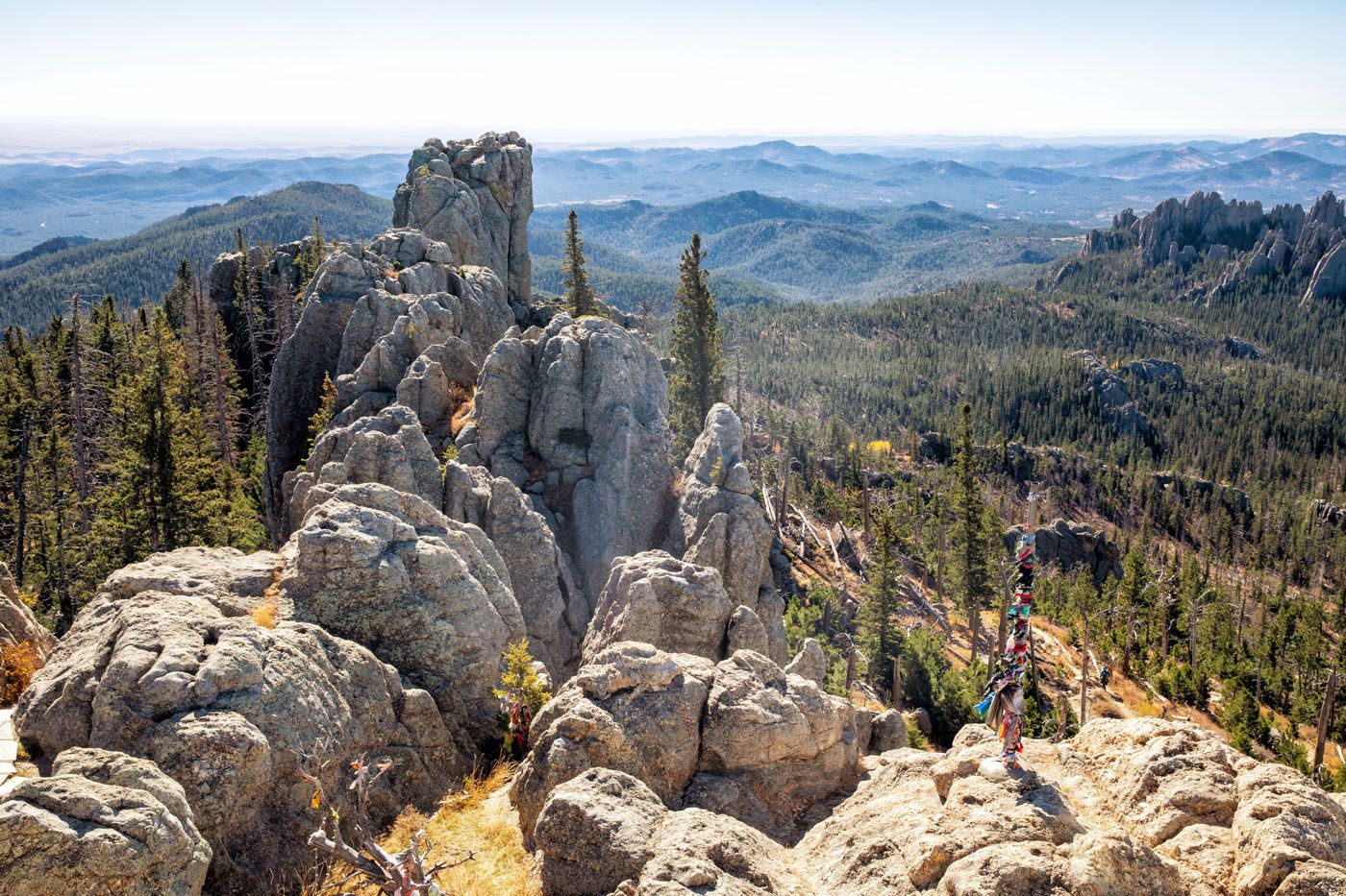 View from Black Elk Peak