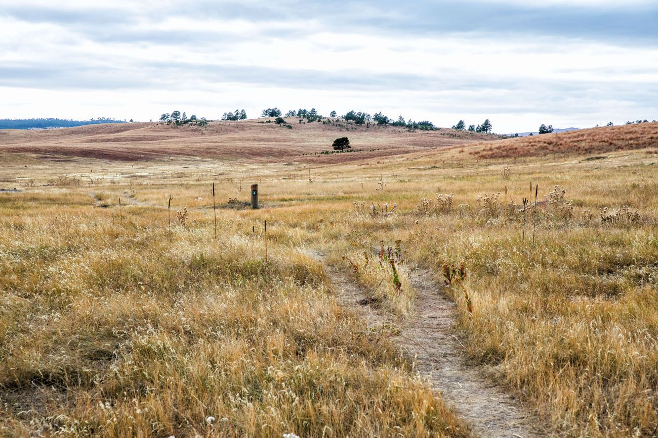 Wind Cave NP Prairie things to do in South Dakota