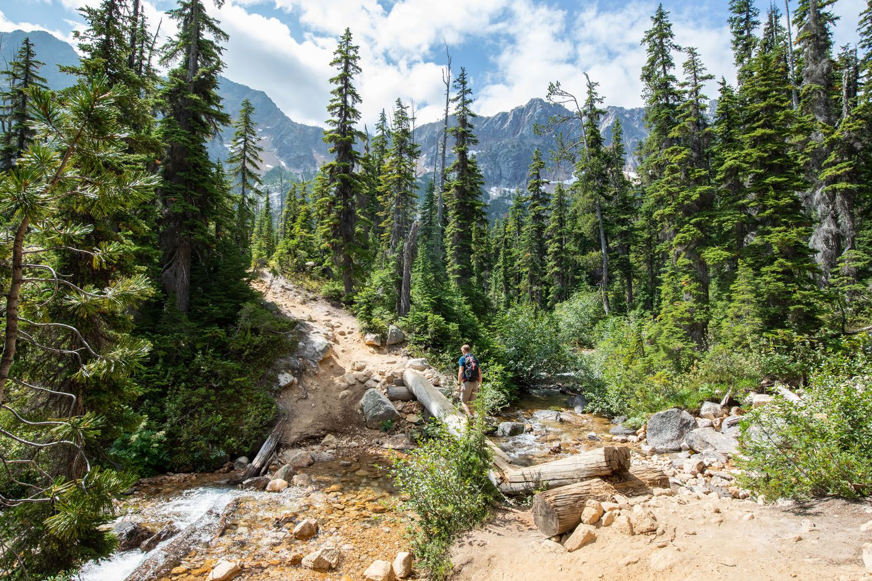 Cutthroat Lake Trail