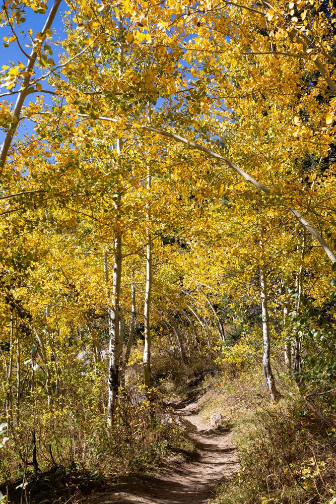 Grand Teton September