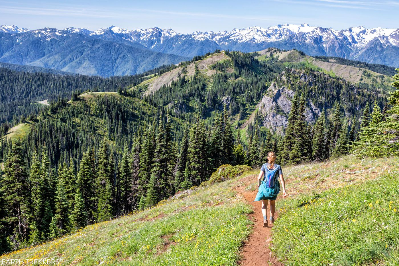 Hurricane Ridge Hike