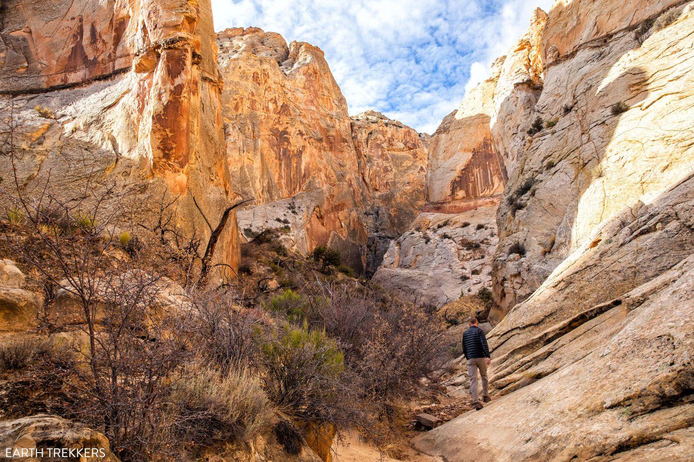 Surprise Canyon