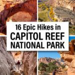 Best Hikes Capitol Reef National Park Travel