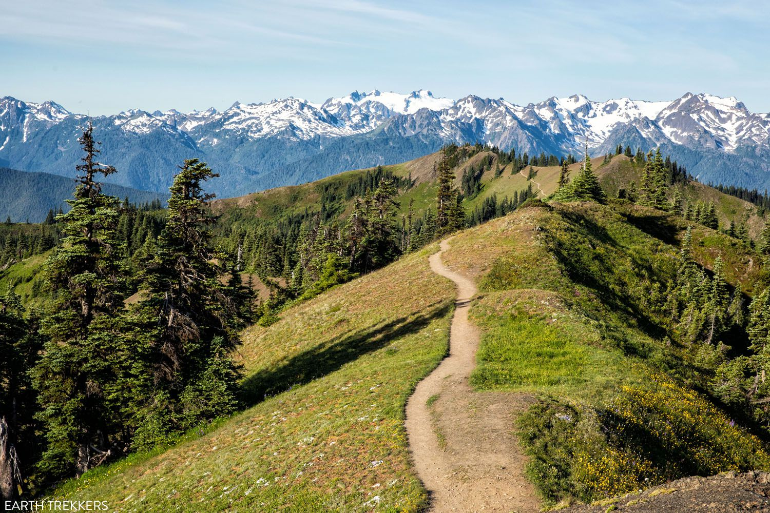 Best Hikes in Olympic National Park photo