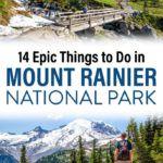Best of Mount Rainier Travel Guide