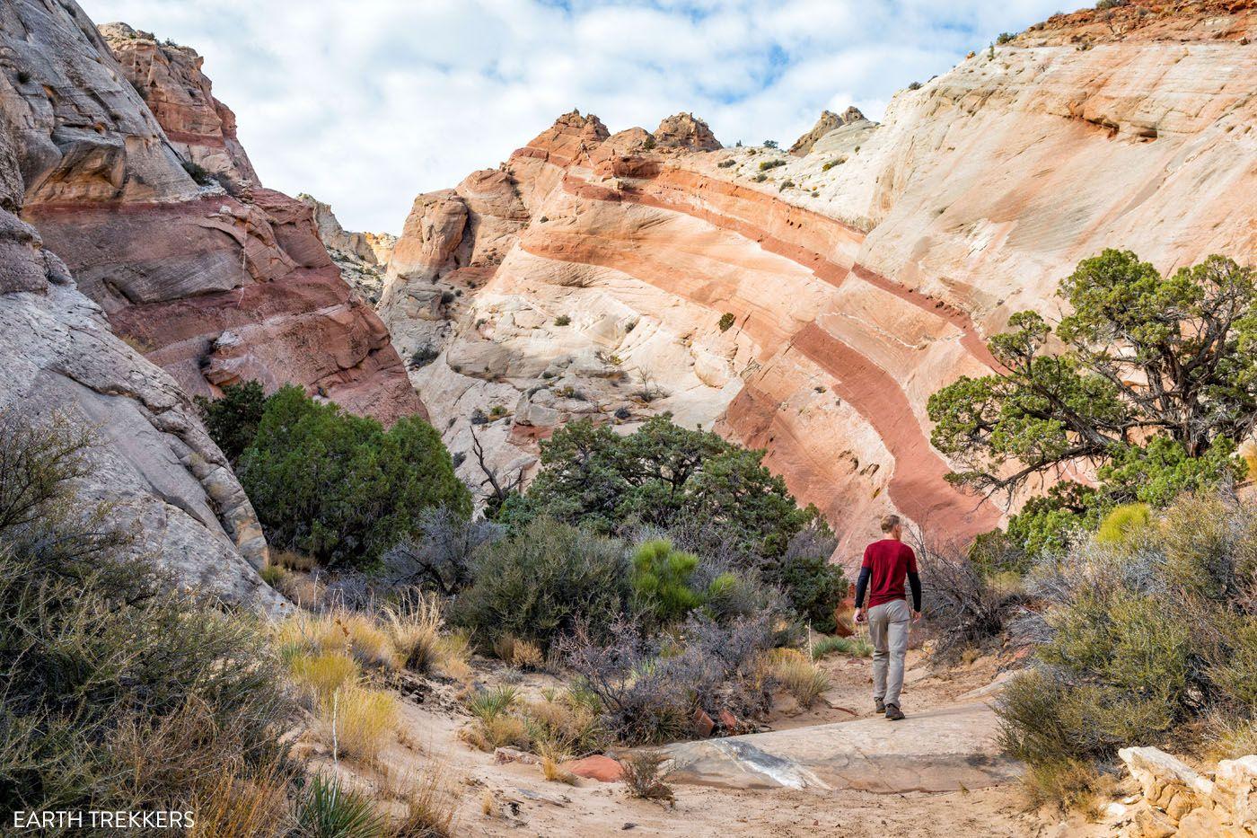 Capitol Reef Hiking Trail