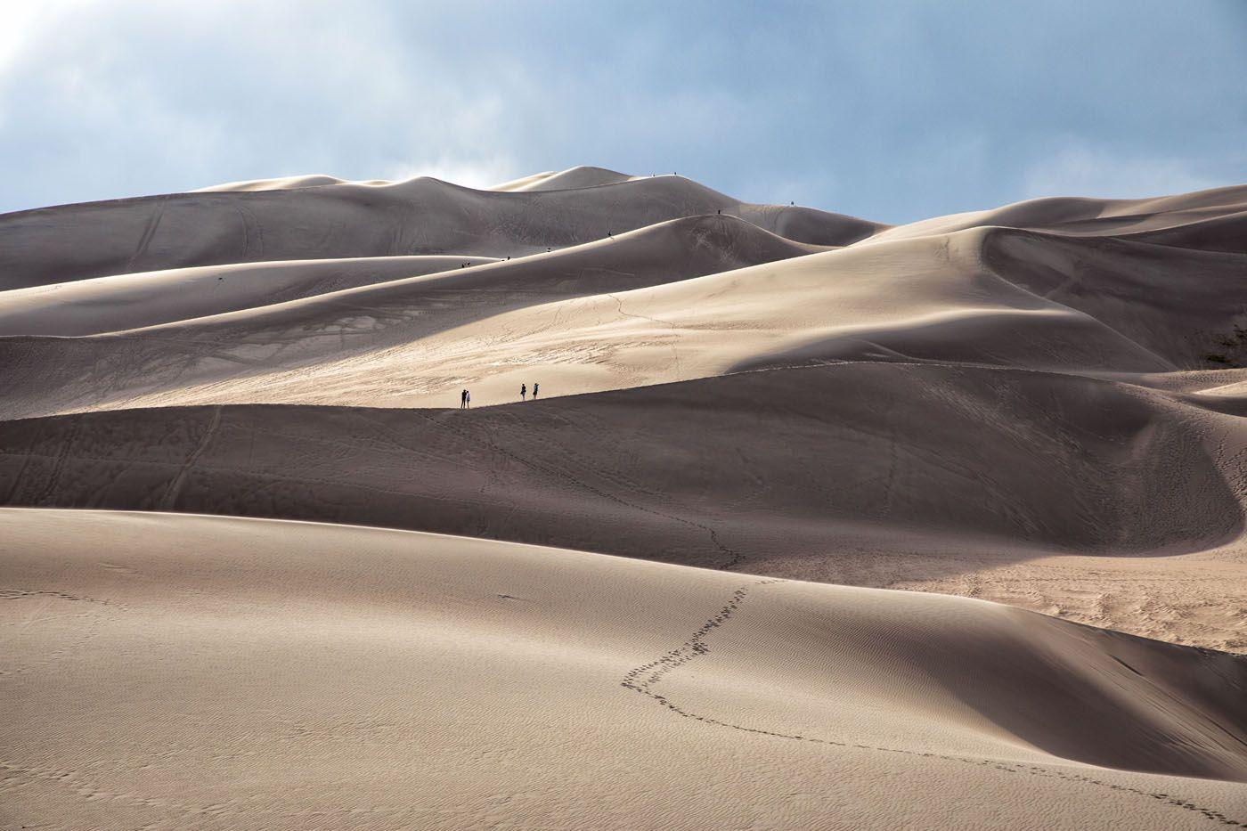 Dunes in the Evening