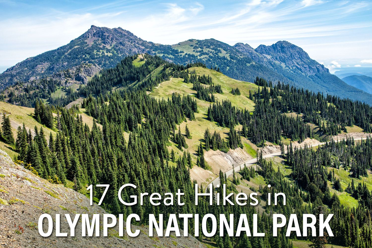 Hikes in Olympic National Park